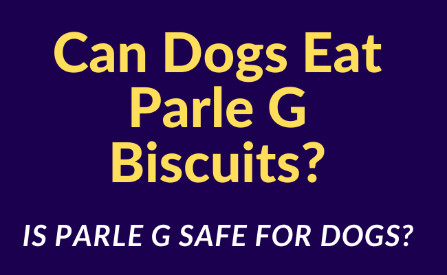 Can Dogs Eat Parle G