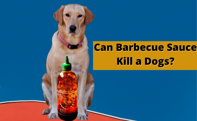 Can Barbecue Sauce Kill a Dog