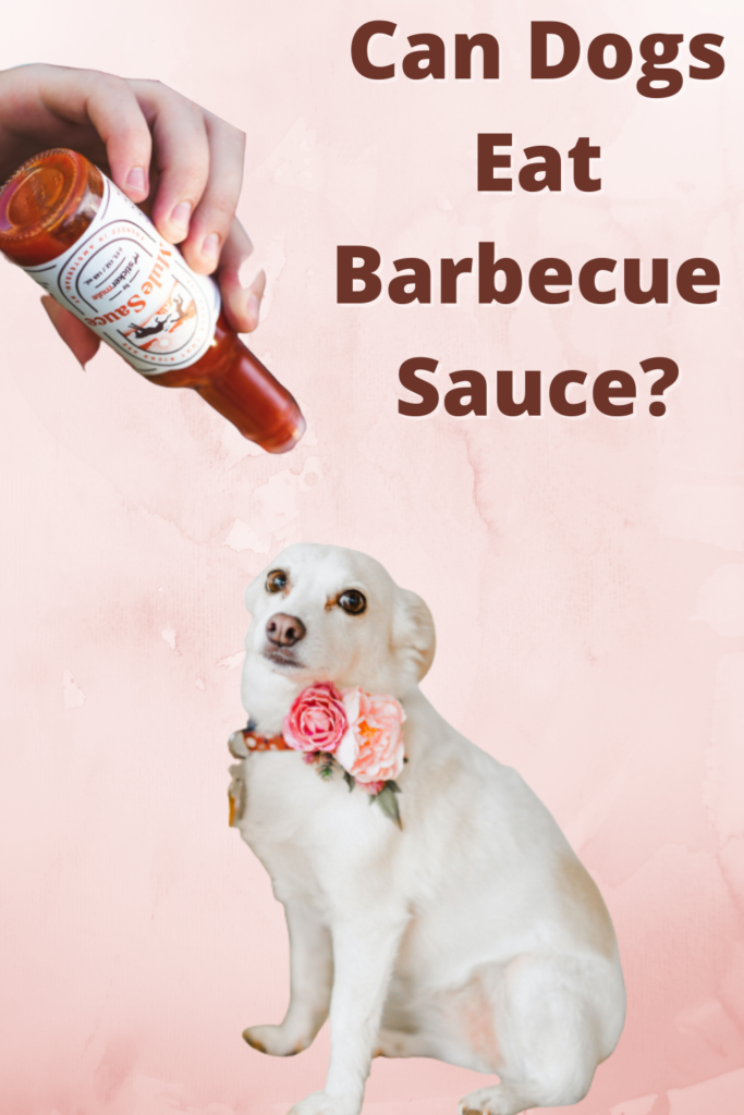 Can Dogs Eat Barbecue Sauce