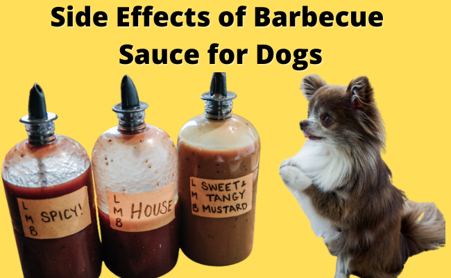 Side effects of barbecue sauce for dogs