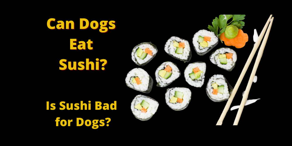 Can Dogs Eat Sushi